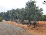 Terrain Pinet 555 m2